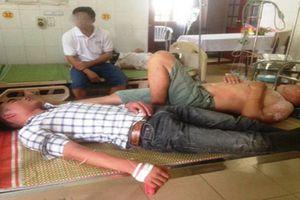 Nghệ An: 11 người thương vong do bị ong vò vẽ đốt