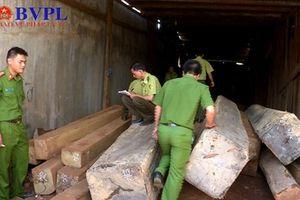 Phát hiện hơn 170m3 gỗ không rõ nguồn gốc trong xưởng cưa
