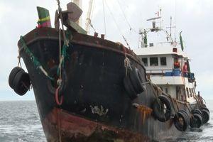 Cảnh sát biển bắt giữ 3 tàu vận chuyển trái phép 250.000 lít dầu DO