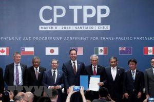 New Zealand chính thức phê chuẩn CPTPP