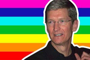 Đây là lý do CEO Apple quyết định công khai là một người đồng tính