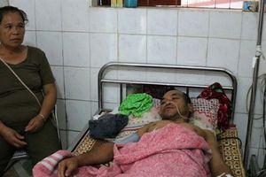 Nghệ An: Ong rừng tấn công khiến 1 người chết, 10 người bị thương