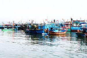 An toàn cho tàu cá mùa mưa bão