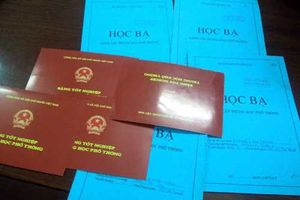 Trưởng Ban Tổ chức Huyện ủy ở Đắk Nông bị tố cáo lấy bằng của chú đi học