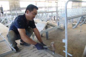 Tháo dỡ trang trại chăn nuôi xây dựng trái phép ở Đồng Nai