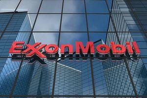 Bang New York (Mỹ) kiện Exxon Mobil
