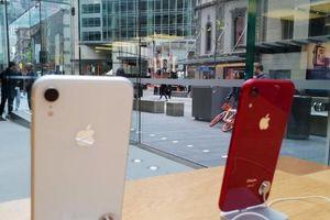 Xếp hàng để mua iPhone mới đã trở thành việc không cần thiết