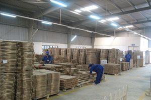 Công nghiệp chế biến gỗ sẽ trở thành ngành mũi nhọn trong 10 năm tới?