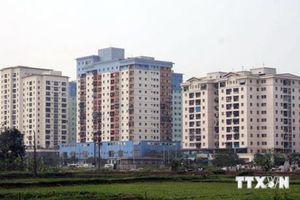 Đà Nẵng chỉ đạo việc bố trí thuê chung cư đối với các hộ giải tỏa