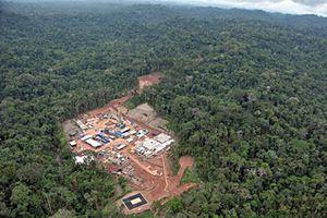'Lá phổi' Amazon đang bốc cháy