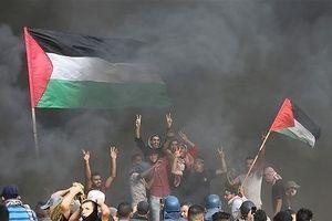 Ai Cập quyết ngăn chặn mọi hình thức bạo lực tại Dải Gaza