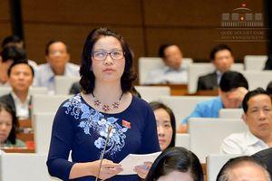 Đại biểu QH đề xuất hỗ trợ vốn cho thanh niên nông thôn khởi nghiệp nông nghiệp