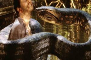Chuyện chưa kể: Quái vật rắn khổng lồ cai trị thời tiền sử Colombia