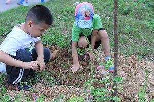 Nhiều gia đình nghệ sỹ đồng hành vì mục tiêu trồng 10.000 cây xanh