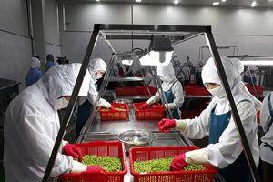 Vốn đăng ký bình quân của doanh nghiệp nông nghiệp gấp đôi cả nước