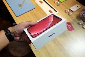 Lộ diện hình ảnh iPhone Xr mới về Việt Nam, giá từ 23 triệu đồng