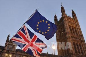 NIESR khuyến cáo về hệ quả của Brexit 'không thỏa thuận'