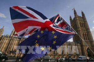 Fitch cảnh báo nước Anh về nguy cơ bất ổn do vấn đề Brexit