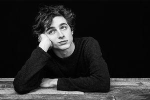 Không còn vẻ đẹp lãng tử, Timotheé Chalamet lột xác thành con nghiện trong bộ phim 'Beautiful Boy' với thông điệp sâu sắc