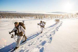 Binh sỹ NATO tập luyện cho cuộc tập trận Trident trong tuyết lạnh