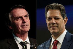 Brazil tiến hành bầu cử tổng thống vòng hai