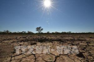 Thách thức trong tiến trình đối phó biến đổi khí hậu