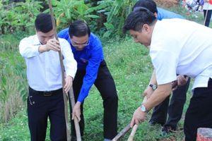 Ngày hội trồng cây 'Hạnh phúc xanh'