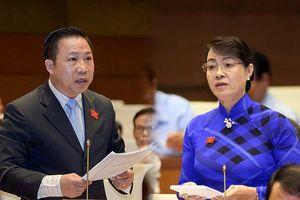 Đại biểu Quốc hội tranh luận xung quanh việc TP.HCM xây nhà hát 1.500 tỷ
