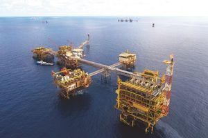 PVD lên theo giá dầu