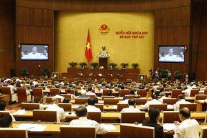 Đại biểu Quốc hội 'khen' công tác điều hành tài chính - ngân sách