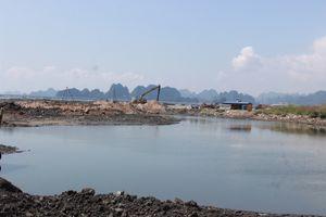 Quảng Ninh: Dự án đang điều chỉnh quy hoạch, doanh nghiệp đã ồ ạt đổ đất lấn biển?