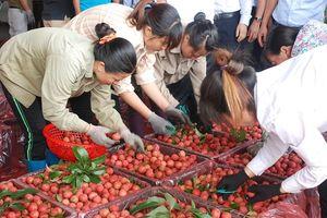 Bộ NN&PTNT 'thúc' xây dựng chỉ đẫn địa lý, thương hiệu nông sản