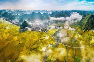 Cảnh sắc Việt đẹp hút hồn trong những bức ảnh nghệ thuật
