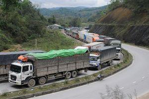 Nông sản xuất khẩu: Chi phí hoa hồng gấp 3-5 lần phí vận chuyển