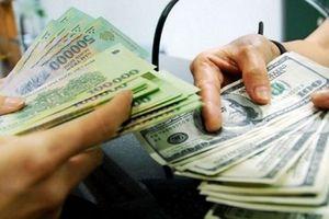 Cần Thơ: Thông tin mới nhất về vụ 'đổi 100 USD bị phạt 90 triệu đồng'