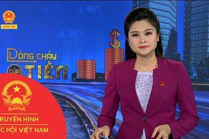 BẢN TIN DÒNG CHẢY CỦA TIỀN TRƯA NGÀY 29/10/2018