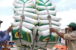 Hà Nội: Xuất khẩu gần 12 tỷ USD sau 10 tháng