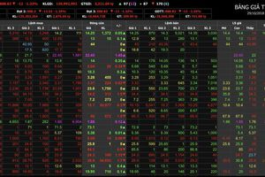 Khởi đầu tuần mới, VN-Index giảm 'sốc', rơi xuống ngưỡng 880 điểm