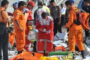 Việt Nam thăm hỏi Indonesia sau vụ máy bay chở 189 người rơi xuống biển