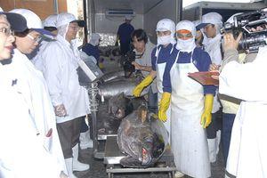 31 thành viên Đoàn Ủy ban nghề cá Nghị viện châu Âu đã tới Bình Định