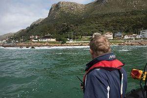 Cơn thèm khát bào ngư bên bờ biển Nam Phi