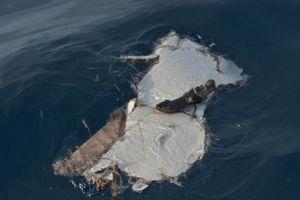Tin thêm về máy bay Indonesia gặp sự cố