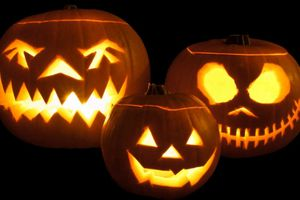 Tại sao bí ngô trở thành biểu tượng của lễ Halloween?