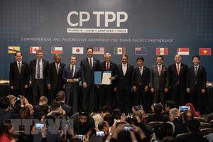 CPTPP sắp 'cán đích' - niềm hy vọng cho tự do thương mại thế giới