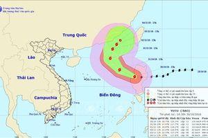 Bão Yutu di chuyển theo hướng Tây Tây Bắc, vùng gần tâm bão đi qua giật cấp 14
