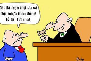 Trưa cười: Thẩm phán choáng váng với công thức bán thịt của bị cáo