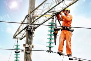 Giá bán buôn cho đơn vị bán lẻ điện tại chợ là bao nhiêu?