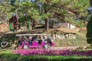 Đà Lạt: Thí điểm dùng ôtô điện chở khách tham quan, du lịch vào dịp cuối năm