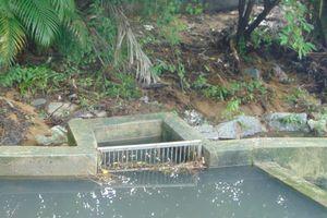 Nước thải qua xử lý thuộc Trạm XLNT KCN Đà Nẵng có đạt chuẩn?