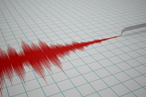 Chile: Động đất mạnh 5,9 độ làm rung chuyển cảng Puerto Williams